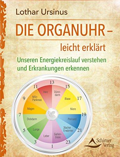 Die Organuhr- leicht erklärt