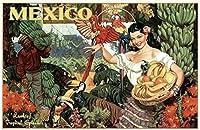 ERZAN大人のパズル木製パズルメキシコ熱帯の素晴らしさの土地ラテン女性バスケットバナナオオハシコンゴウインコ旅行家の装飾パズル1000