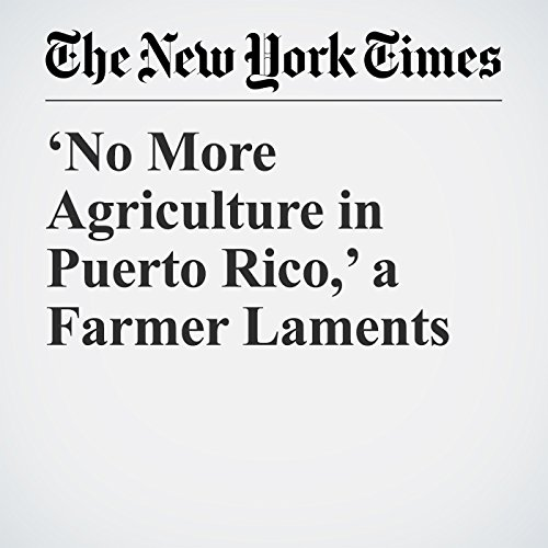 'No More Agriculture in Puerto Rico,' a Farmer Laments audiobook cover art