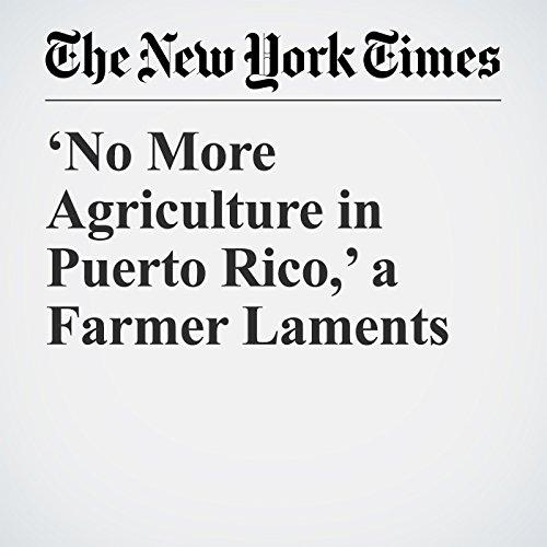 'No More Agriculture in Puerto Rico,' a Farmer Laments copertina