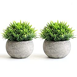 2 Pcs Fake Plants Pots for  Bathroom and Home Decor