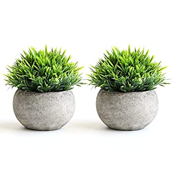 THE BLOOM TIMES 2 Pcs Fake Plants for Bathroom/Home Office Decor Small Artificial Faux Greenery for House Decorations  Potted Plants