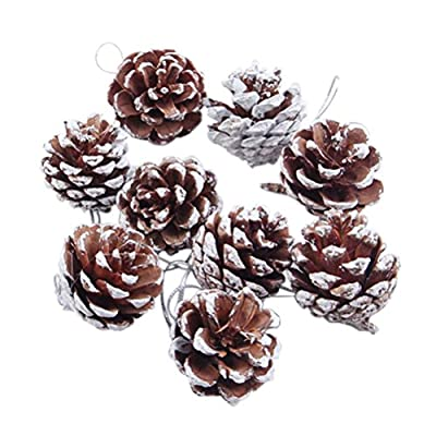 Snow Tipped Or Plain Brown Pinecones for all Your Christmas Projects