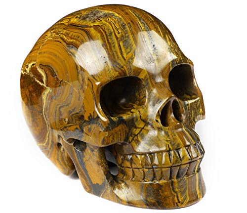 Skullis 5.0' Tiger Iron Eye Crystal Skull, Hand Carved Gemstone Fine Art Sculpture, Reiki Healing Stone Statue.
