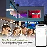 Zoom IMG-1 lampadina alexa wifi e27 fitop
