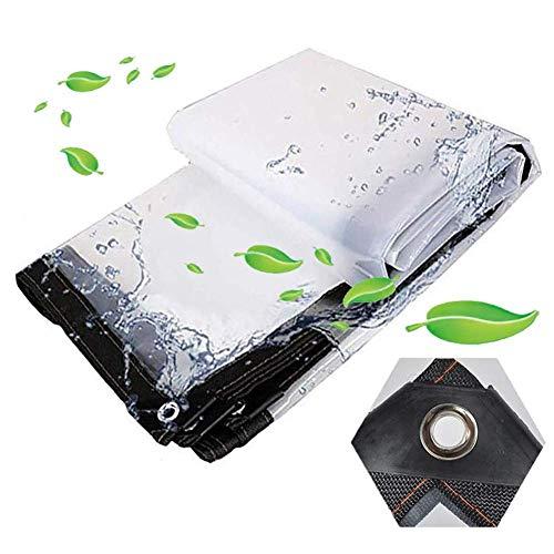 MNBV Lona Transparente, con Orificios de Metal Terraza Planta Impermeabilizante Carpa Pabellón de jardinería Paño de plástico Impermeable, 23 tamaños (Color: Transparente, Tamaño: 5x6m)