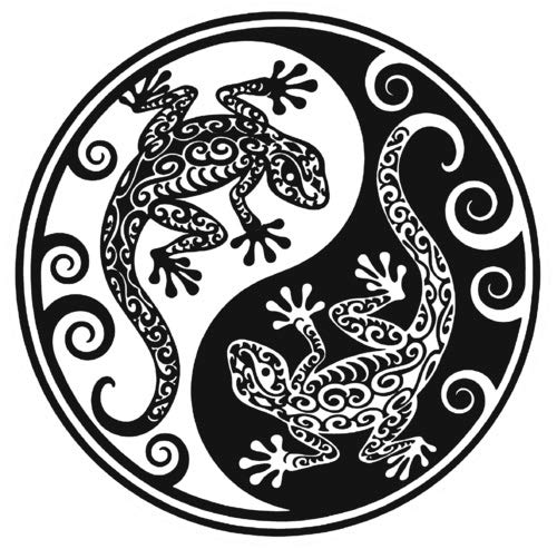KE OU White and Black Yin Yang Geckos Colourful Decor Quote Plaque Metal Tin Sign for Wall Decor