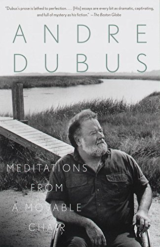 Meditations from a Movable Chair (Vintage Contemporaries) (English Edition)