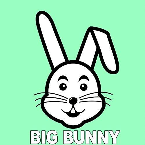 Rousing House, Big Bunny, Sergii Petrenko, 21 ROOM & Format Groove