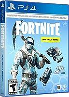 Fortnite: Deep Freeze Bundle (PS4) (輸入版)