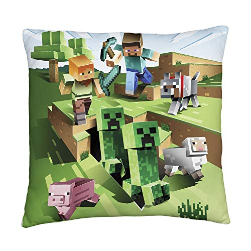 Minecraft Two Sided Farm Creeper Square Cushion Pillow – Perfect For Any Children's Room Or Bedroom