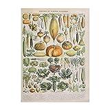 zaishuiyifang Cartel Sin Marco De Setas De Frutas Vegetales Vintage, Pintura En Lienzo Impresa, Decoración De Pared para El Hogar, Cuadros Artísticos De Pared Sin Marco A312(50X70Cm)