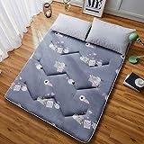 ZH Boden Tatami-Matte, Schlafmatratzenauflage Pad Folding Dicker, Futon-Matratze Kissen, Studentenwohnheim Schlafmatte (Color : I, Size : 120x200cm(47x79inch))