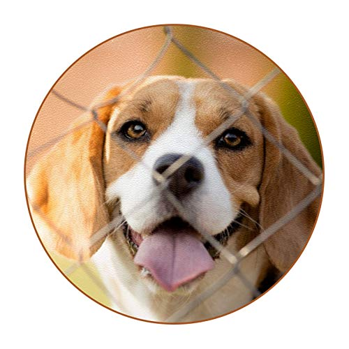 Coasters for Drinks Cute Puppy Set of 6 Coasters, Microfiber leather, Protect Against Water Marks or Damage - Fit All Cups, 3.4' Size Fits, Colored Coasters