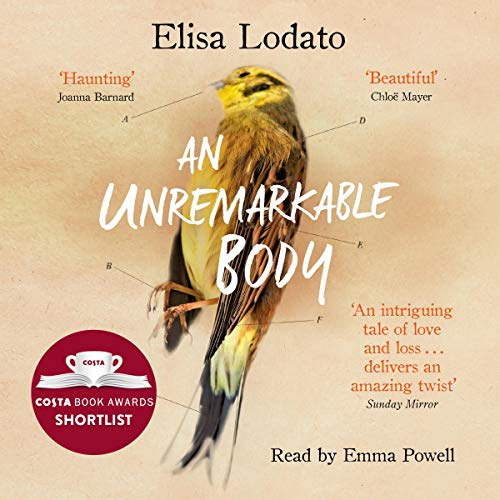 An Unremarkable Body cover art