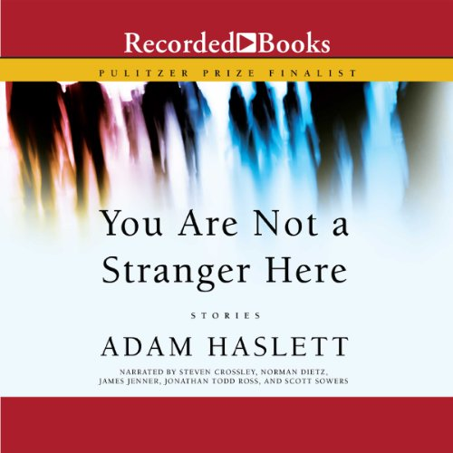 You Are Not a Stranger Here audiobook cover art