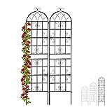 Relaxdays Rankgitter Metall, 2er Set, zum Stecken, Rankhilfe für Kletterpflanzen, 220 x 50 cm, Spalier Garten, schwarz