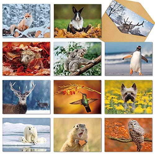 Cartes d'Anniversaire d'Animaux, 24 Packs Cartes de Vœux de Remerciement Remarques Blanches,Cartes Mignons de Chien/Eléphant/Elan pour les Enfants,Amoureux des Animaux, Amis, Employés,Collègues…