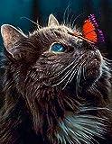 Bougimal 5D Pintura de Diamante Gato, DIY Diamante Painting para Adultos Inicio Decoración de Pared,40X50cm