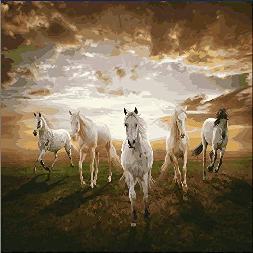 HQZhanQi Erwachsene Und Kinder Durch Digitale MalereiDIYMalkasten-Pferde ImGalopp40 * 50Cm (Gerahmt)