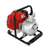DiLiBee Bomba de Agua de Gasolina de 1'- Motor de 2 Tiempos, Bomba de Motor 43cc 1.7hp para riego...