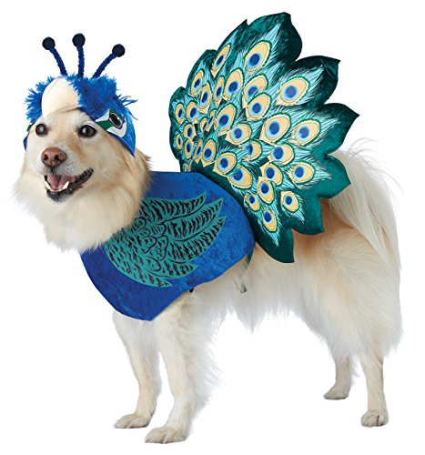 California Costumes Pet Pretty As A Peacock Dog Costume Costume