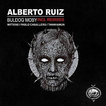 Buldog Moby