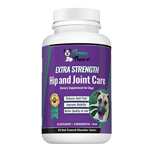 Glucosamine Chondroitin for Dogs with MSM - All Natural Hip and Joint Supplement - Improves Mobility & Hip Dysplasia - Dog Arthritis Pain - Joint Pain - Reduces Inflammation - Beef Flavor Tablets