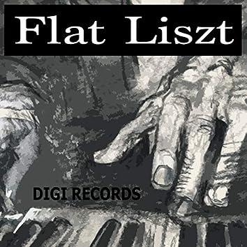 Flat Liszt (Electronic Version)
