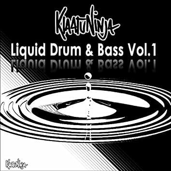 Liquid Drum & Bass, Vol. 1