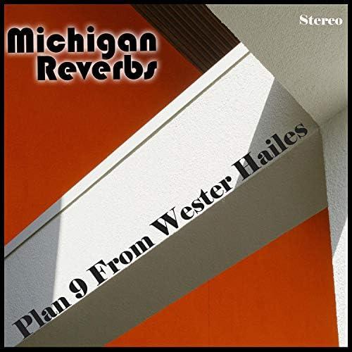 Michigan Reverbs