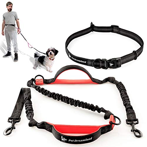 Pet Dreamland Running Dog Leash for Small Dogs - Walking Hiking Training - Extra Long Bungee Dog Lead - Reflective Leashes for Small Dogs (Black & Red)