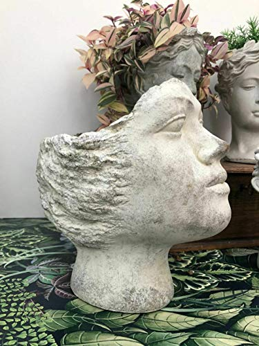 Homes on Trend Plant Pot Face Head Flower Planter Roman Greek Style Cherub Grey Wash Concrete Cement Indoor Outdoor Decorative Garden Stoneware Herb Succulent Cactus Holder Container Vase Window Box