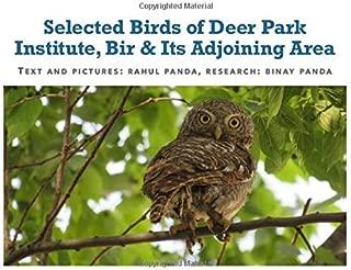 deer park institute