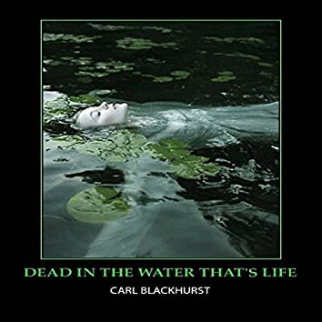 Dead in the Water That's Life