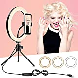 Ring Light with Tripod Stand and Phone Holder, 10 inch Desktop...