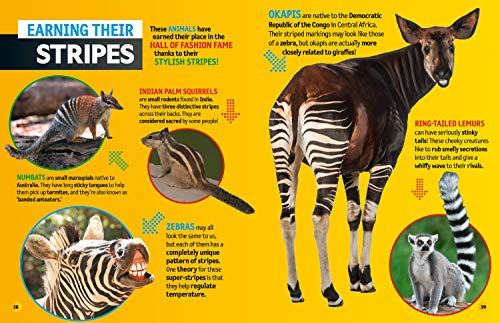 Weird but true! 2021: wild and wacky facts & photos! (National Geographic Kids)