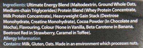 Boditronics Mass Attack Heavyweight 6kg Milk Chocolate Serious High Calorie Muscle Mass Gain Powder
