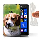 Hülle Für Nokia Lumia 625 Hund/Eckzahn Rassen Beagle