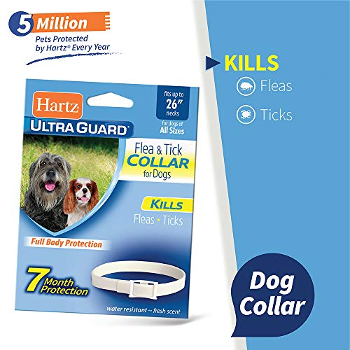 "Hartz UltraGuard Flea & Tick Collar for Dogs and Puppies - 26"" Neck, 7 Month Protection"