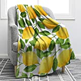 Jekeno Lemon Throw Blanket Print Blanket Lightweight Fruits Leaves Decorative Blanket Perfect for Couch Sofa Travelling 50'x60'