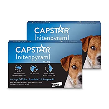 Capstar Flea Tablets for Dogs 2-25 lbs Count of 12 12 CT