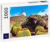 Lais Puzzle Jardín de Cactus, Jardín de Cactus en Guatiza, Lanzarote, Islas Canarias, España 1000 Piezas