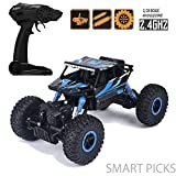 Smart Picks 1:18 Rechargeable Rock Crawling 4WD 2.4 Ghz 4x4 Rally Car Remote
