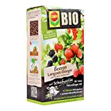 COMPO 20299 BIO Beeren Langzeit-Dünger für alle Beerenpflanzen, Kern- und Steinobst, 5 Monate Langzeitwirkung, 2 kg