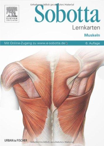 Sobotta Lernkarten Muskeln: Muskeln - mit Zugang zum Elsevier-Portal