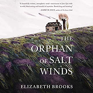 The Orphan of Salt Winds audiobook cover art