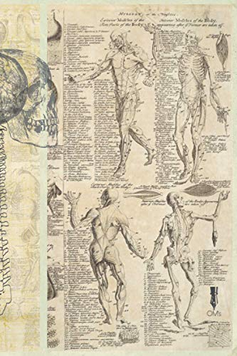 Vintage Art Anatomy Notebook [ Paperback ]( 120 pages / Unlined / 6x9 inch / Cream Colour ): 15x22 cm/ with Leonardo Da Vinci's drawings.