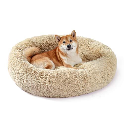 UMI Amazon Brand Hundebett Plüsch weich warm Donut Haustierbett für Hund Flauschiges kuscheliges Schlafbett Multi-Size-Haustier Sofa für klein-mittelgroße Hunde maschinenwaschbar beige L