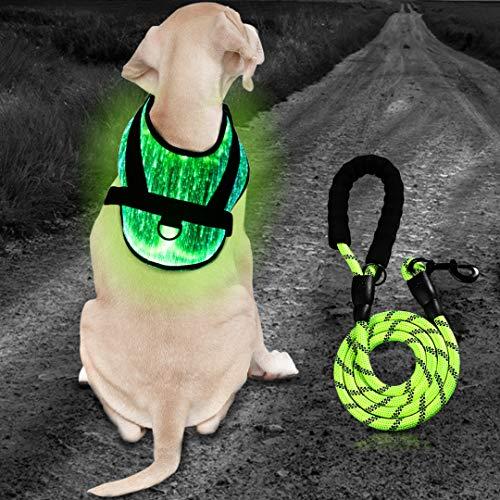 BELLISK LED-Hundegeschirr in Größen XS-S / M / L aus Glasfasern, 7 Farben - 2 Leuchtmodi, leuchtendes Premium-Hundegeschirr, Warnweste Gelb Pink, Blinklicht (M, Grün)